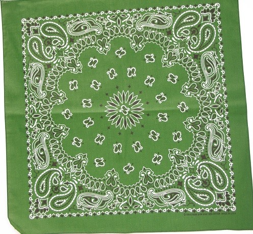 #063 Forrest Green Paisley Bandana