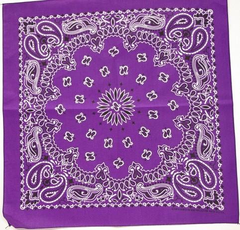 #114 Purple Paisley Bandana