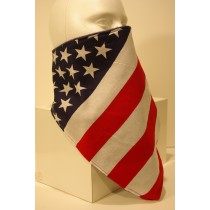 #085 US Flag