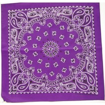 #114 Purple Paisley Bandana