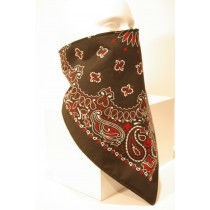 #119 Red Black Paisley