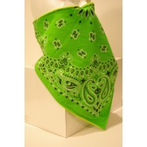 #125 Lime Green Paisley