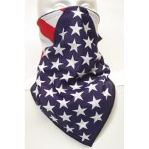 #278 US Flag-Stars