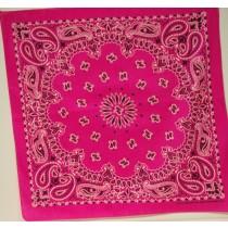 #015 Hot Pink Paisley Bandana