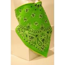 #125 Lime Green Paisley