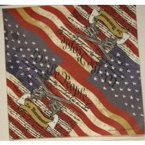 #258 2nd Amendment Flag