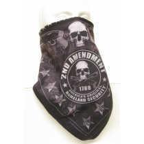 #259 2nd Amendment Skull Banner